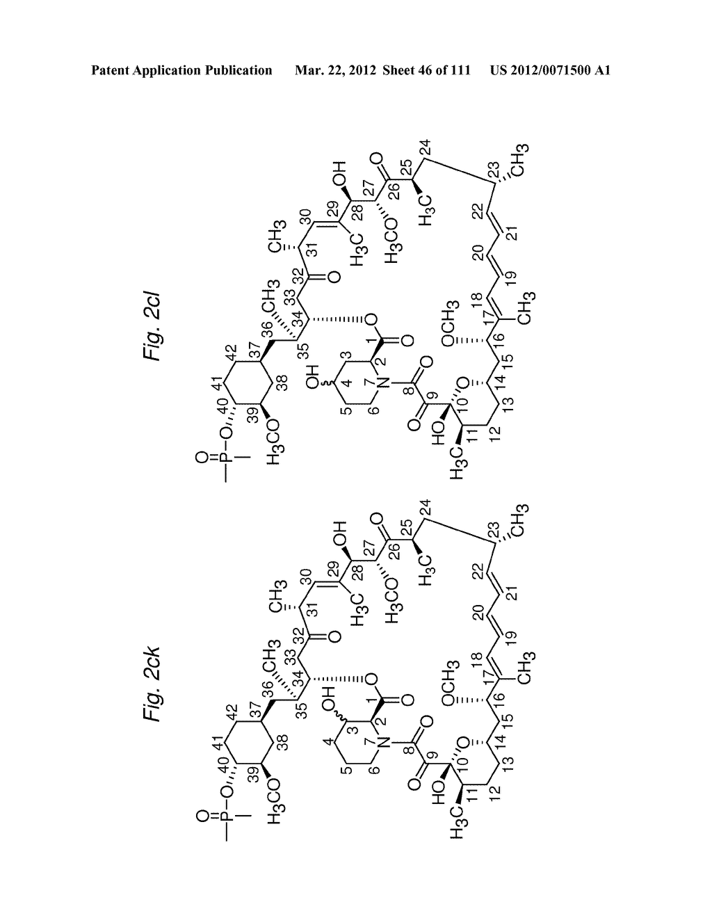 MACROCYCLIC LACTONE COMPOUNDS AND METHODS FOR THEIR USE - diagram, schematic, and image 47