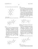 Compositions and Their Use as Anti-Tumor Agents diagram and image