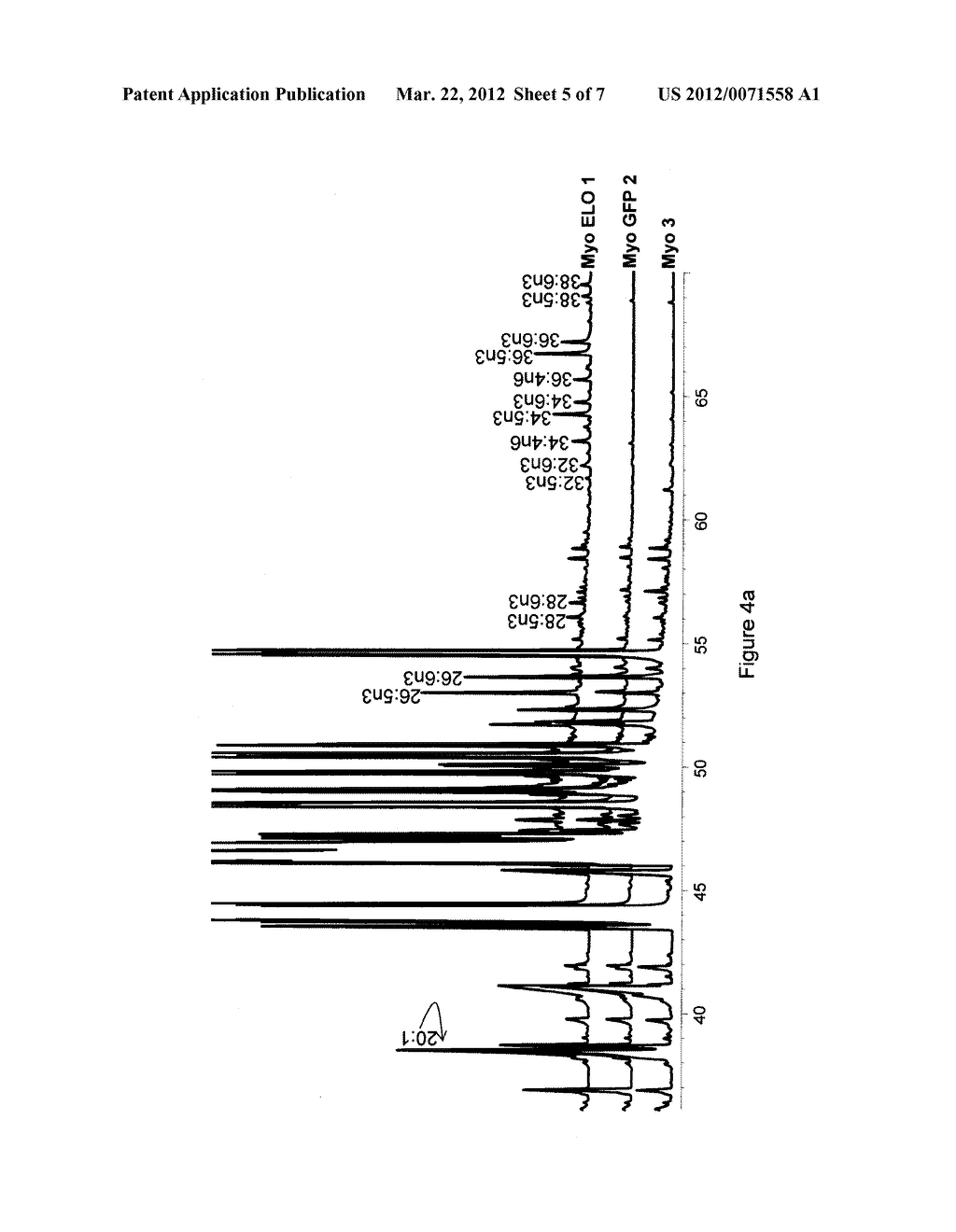COMPOSITIONS OF VERY LONG CHAIN POLYUNSATURATED FATTY ACIDS AND METHODS OF     USE - diagram, schematic, and image 06