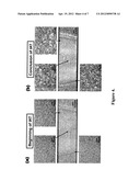Abnormal Grain Growth Suppression in Aluminum Alloys diagram and image