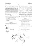 OPTICALLY ACTIVE QUATERNARY AMMONIUM SALT HAVING AXIAL ASYMMETRY, AND     METHOD FOR PRODUCING ALPHA-AMINO ACID AND DERIVATIVE THEREOF BY USING THE     SAME diagram and image