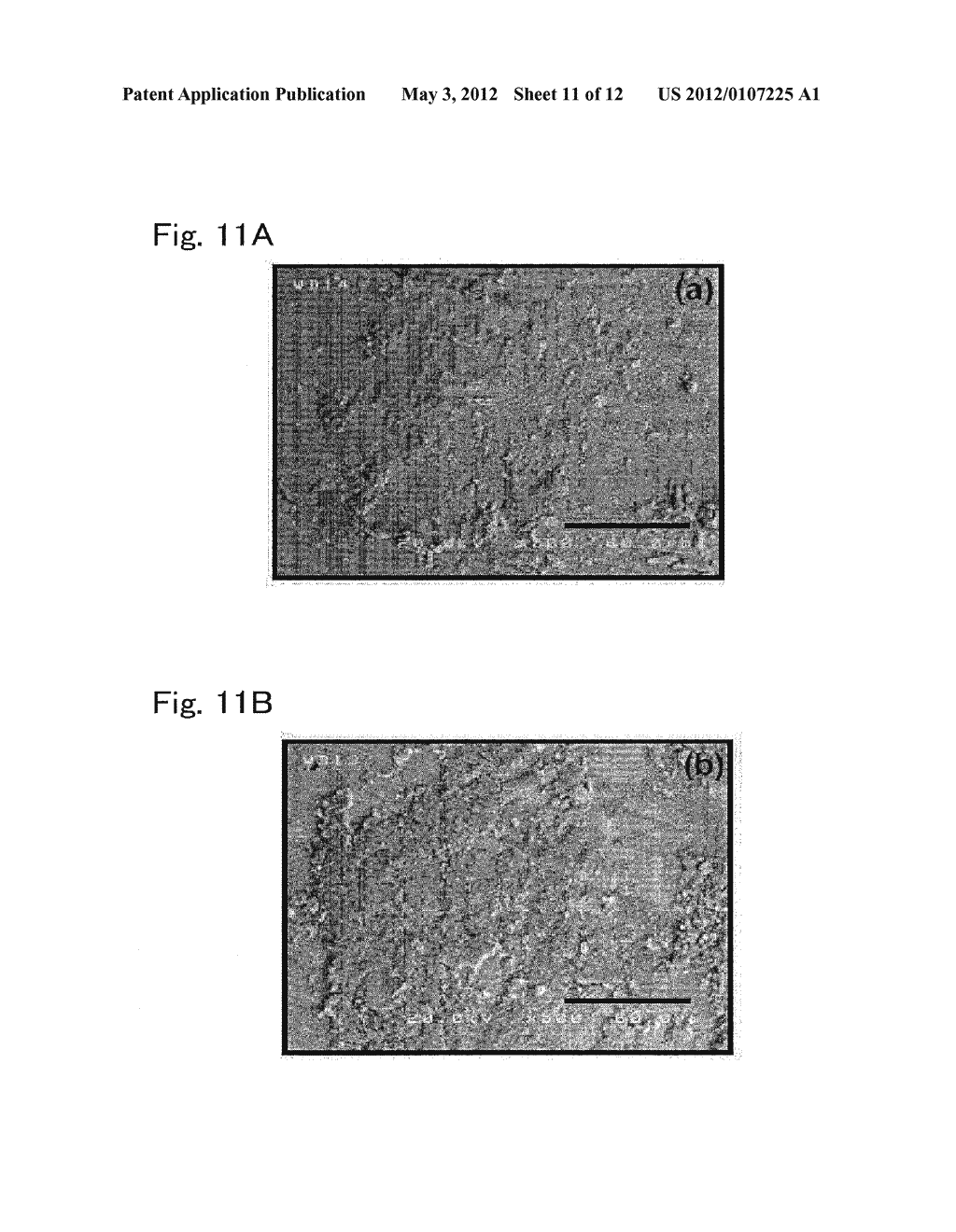 METHOD FOR PRODUCING TITANIUM-BASED MATERIAL FOR BIO-IMPLANT HAVING ZINC     FUNCTIONAL GROUP GIVEN THERETO, AND TITANIUM-BASED MATERIAL FOR     BIO-IMPLANT - diagram, schematic, and image 12