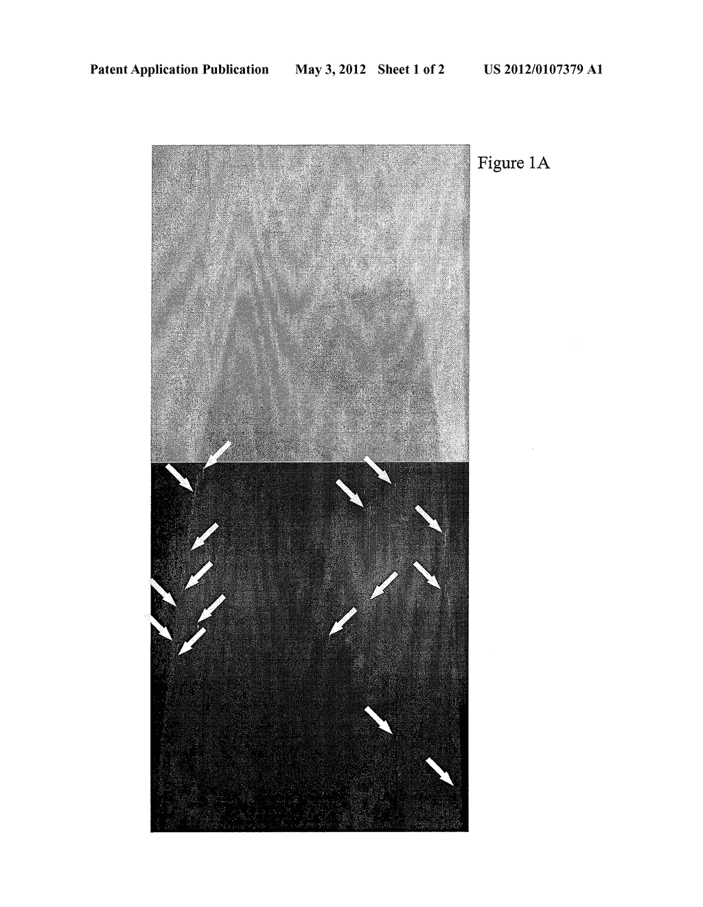 WATER BASE SLURRY COMPOSITION FOR COSMETIC PRODUCTS AND METHODS OF USE - diagram, schematic, and image 02