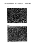 Hollow Polymeric-Silicate Composite diagram and image