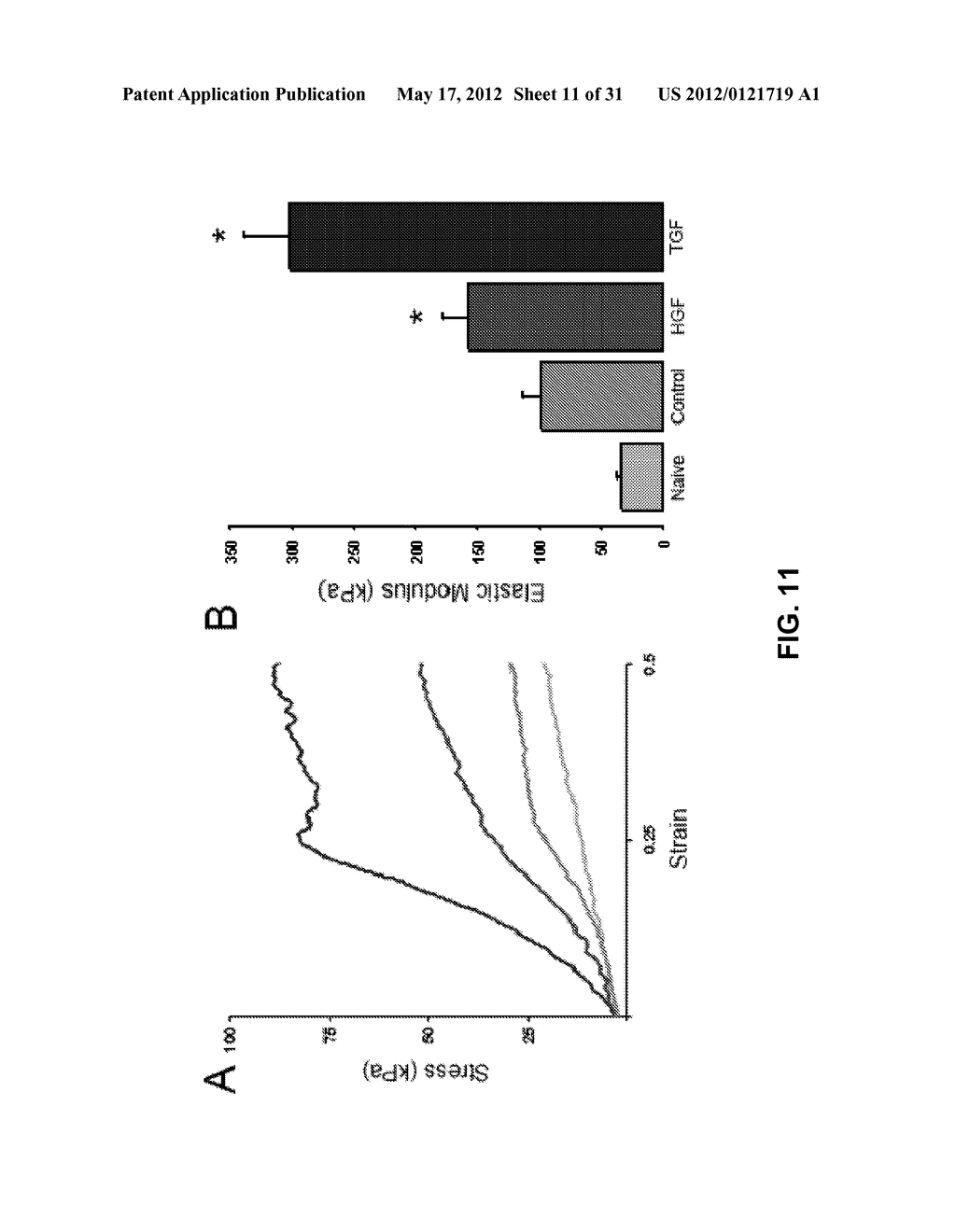 METHODS OF MAKING AND USING THREE-DIMENSIONAL EXTRACELLULAR MATRICES - diagram, schematic, and image 12