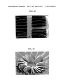SINGLE-WALLED CARBON NANOTUBE AND ALIGNED SINGLE-WALLED CARBON NANOTUBE     BULK STRUCTURE, AND THEIR PRODUCTION PROCESS, PRODUCTION APPARATUS AND     APPLICATION USE diagram and image