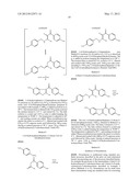 NEW PROCESS FOR PREPARING HYDROXYLAMINES AND MEDICAMENTS diagram and image