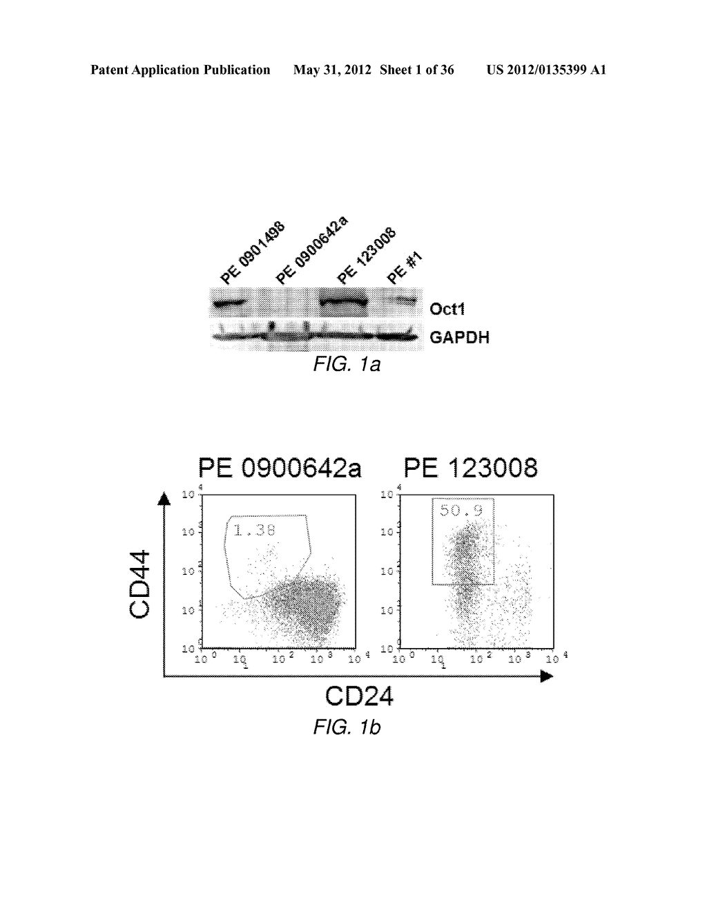 CANCER BIOMARKER AND METHODS OF USING THEREOF - diagram, schematic, and image 02