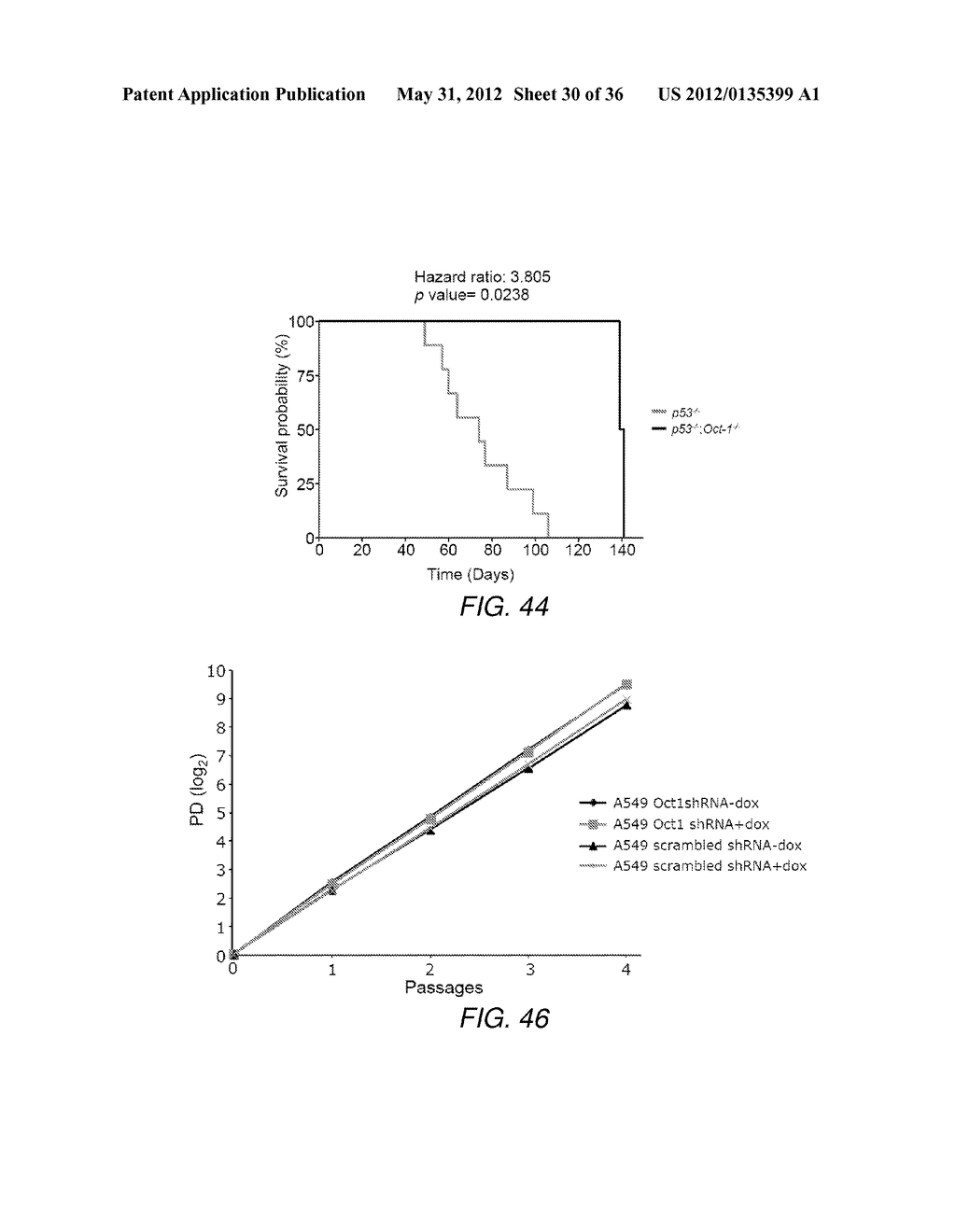 CANCER BIOMARKER AND METHODS OF USING THEREOF - diagram, schematic, and image 31