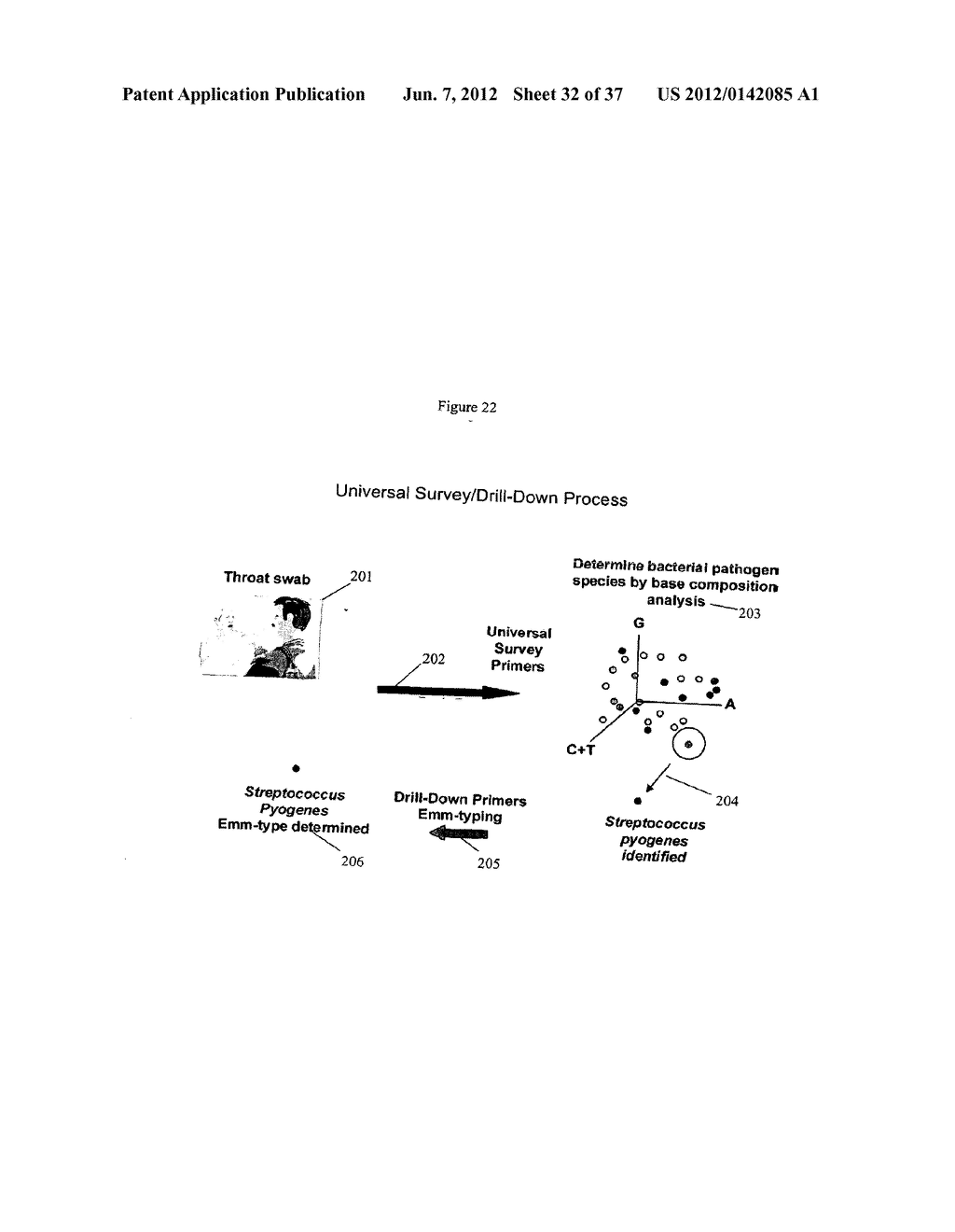 SYSTEMS FOR RAPID IDENTIFICATION OF PATHOGENS IN HUMANS AND ANIMALS - diagram, schematic, and image 33