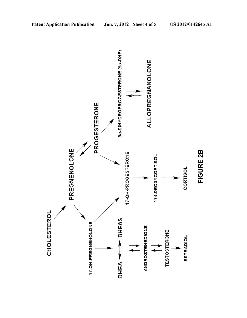 NEUROACTIVE STEROID COMPOSITIONS AND METHODS OF USE FOR LOWERING     CHOLESTEROL - diagram, schematic, and image 05