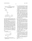 N-(2-OXO-1-PHENYLPIPERIDIN-3-YL)SULFONAMIDES FOR THE IDENTIFICATION OF     BIOLOGICAL AND PHARMACOLOGICAL ACTIVITY diagram and image