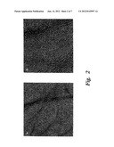 PRODUCTION OF VERTICAL ARRAYS OF SMALL DIAMETER SINGLE-WALLED CARBON     NANOTUBES diagram and image