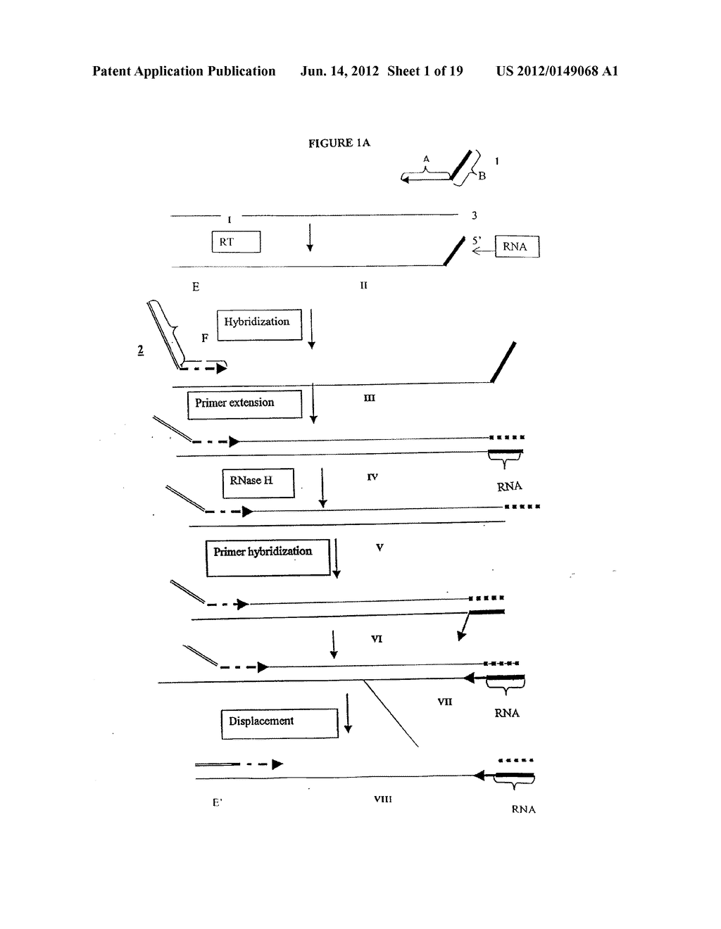 METHODS AND COMPOSITIONS FOR AMPLIFICATION OF RNA SEQUENCES - diagram, schematic, and image 02