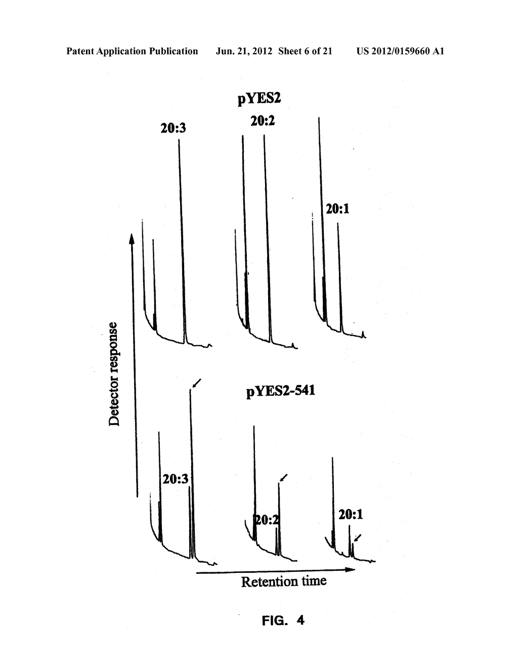 DESATURASES AND METHODS OF USING THEM FOR SYNTHESIS OF POLYUNSATURATED     FATTY ACIDS - diagram, schematic, and image 07