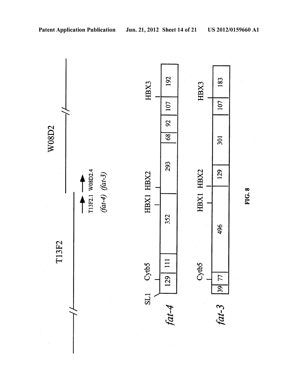 DESATURASES AND METHODS OF USING THEM FOR SYNTHESIS OF POLYUNSATURATED     FATTY ACIDS - diagram, schematic, and image 15