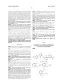 SALTS OF BICYCLO-SUBSTITUTED PYRAZOLON AZO DERIVATIVES, PREPARATION METHOD     AND USE THEREOF diagram and image