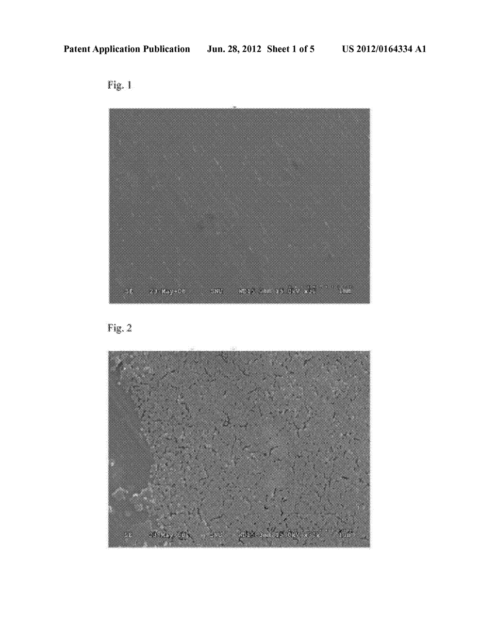 ARTICLE TREATED WITH SILICA PARTICLES AND METHOD FOR TREATING A SURFACE OF     THE ARTICLE - diagram, schematic, and image 02