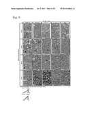 NANOCRYSTAL TITANIUM ALLOY AND PRODUCTION METHOD FOR SAME diagram and image