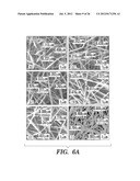 ELECTROSPUN SILK MATERIAL SYSTEMS FOR WOUND HEALING diagram and image