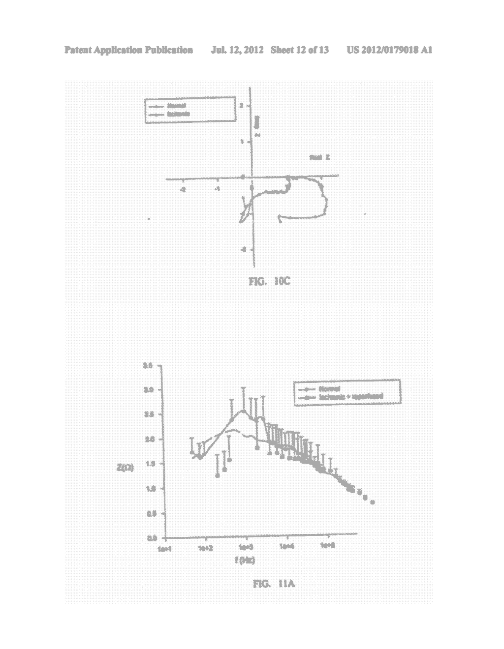 Impedance spectroscopy system and catheter for ischemic mucosal damage     monitoring in hollow viscous organs - diagram, schematic, and image 13