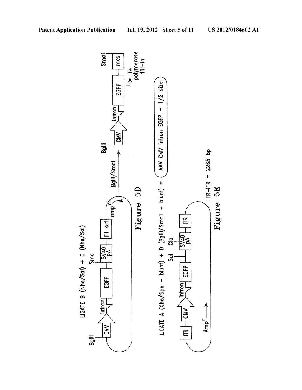 METABOLICALLY ACTIVATED RECOMBINANT VIRAL VECTORS AND METHODS FOR THEIR     PREPARATION AND USE - diagram, schematic, and image 06
