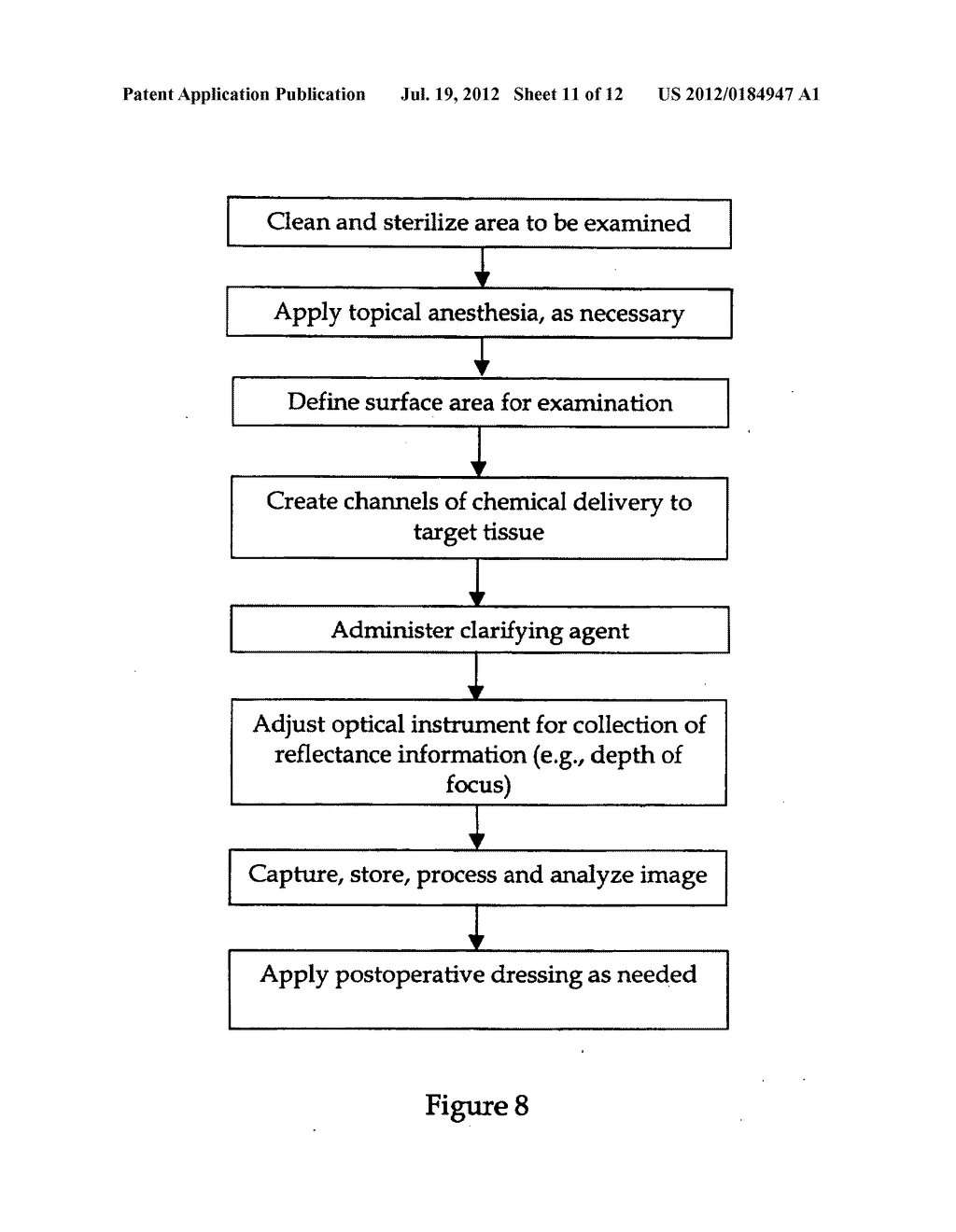 METHOD AND APPARATUS TO ENHANCE OPTICAL TRANSPARENCY OF BIOLOGICAL TISSUES - diagram, schematic, and image 12