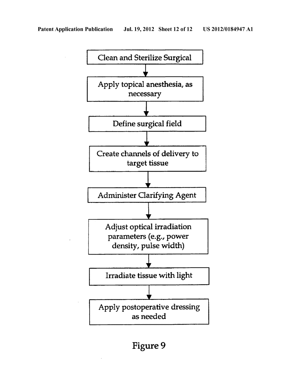 METHOD AND APPARATUS TO ENHANCE OPTICAL TRANSPARENCY OF BIOLOGICAL TISSUES - diagram, schematic, and image 13