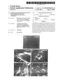 Process for the Preparation of Talc Based Formulation for LDPE-Degrading     Bacterial Consortia diagram and image