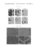 METHOD OF EFFICIENTLY ESTABLISHING INDUCED PLURIPOTENT STEM CELLS diagram and image