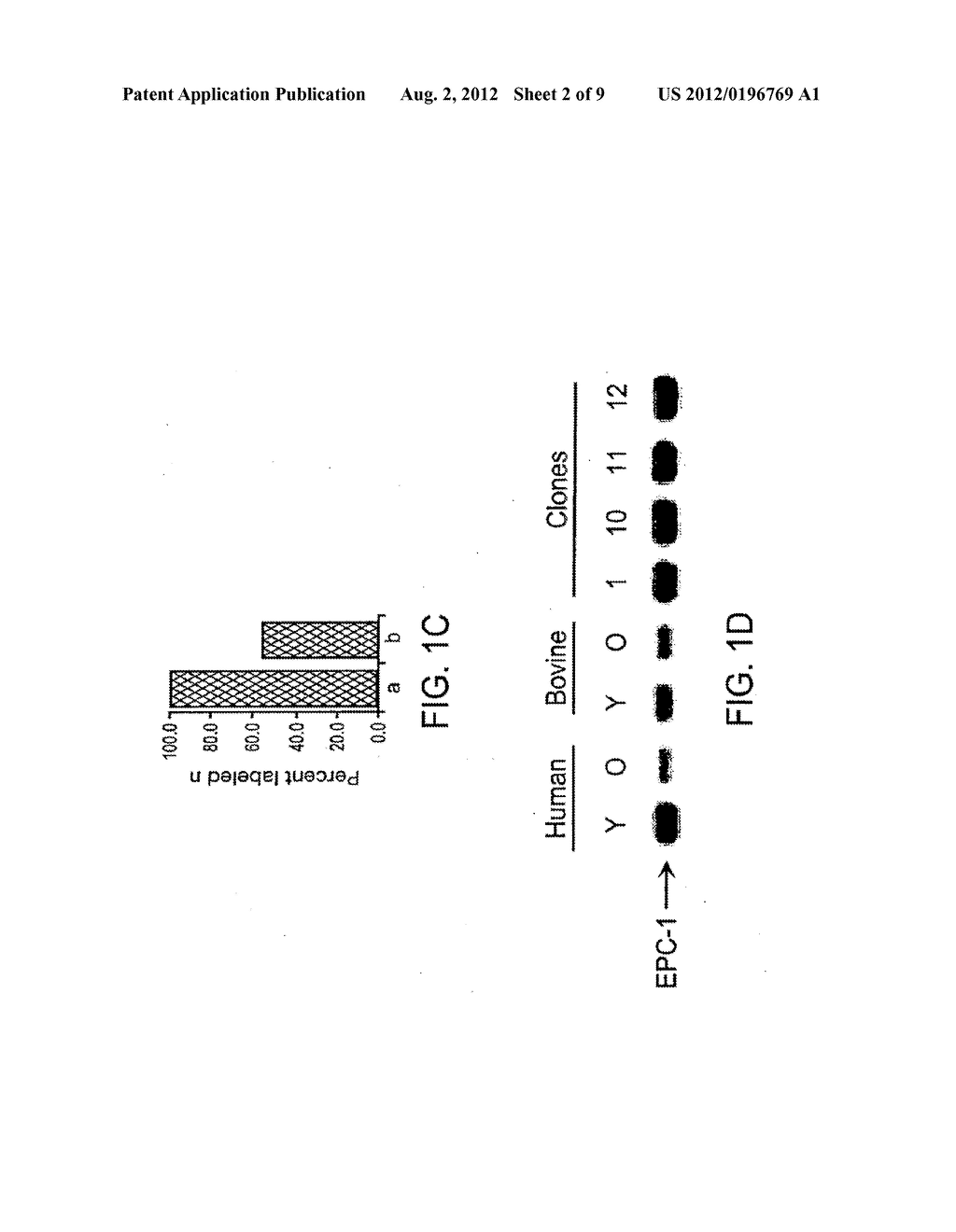 Methods of repairing tandemly repeated DNA sequences and extending cell     life-span using nuclear transfer - diagram, schematic, and image 03