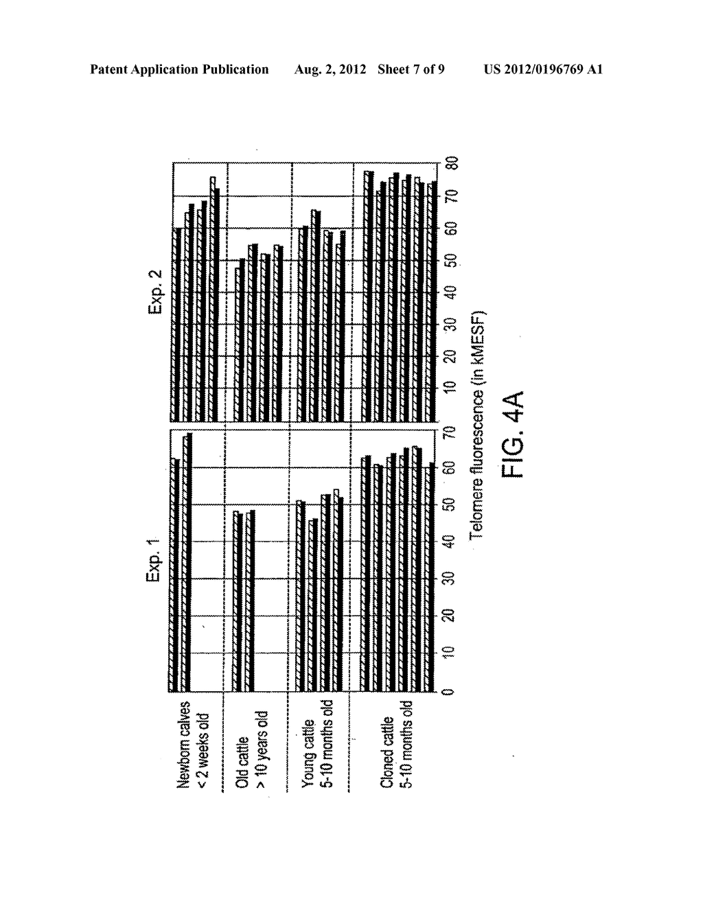 Methods of repairing tandemly repeated DNA sequences and extending cell     life-span using nuclear transfer - diagram, schematic, and image 08
