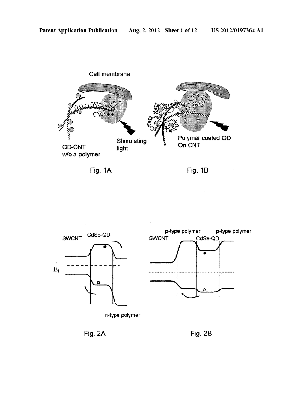 PHOTOELECTRICAL DEVICES FOR STIMULATING NEURONS - diagram, schematic, and image 02