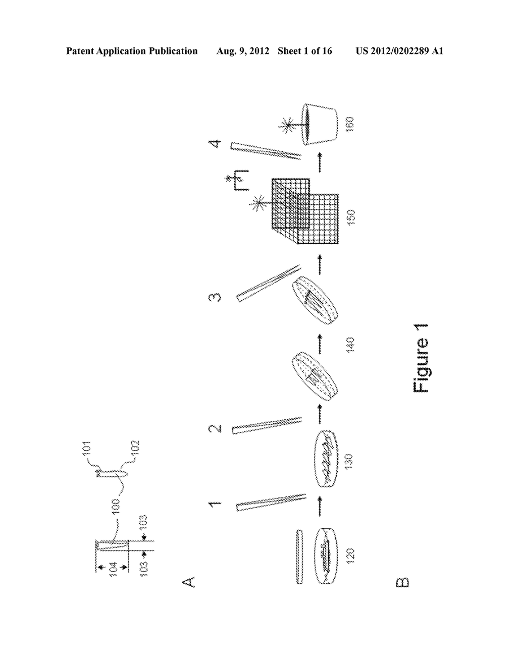 SEPARATOR DEVICE, DEPOSITION DEVICE AND SYSTEM FOR HANDLING OF SOMATIC     PLANT EMBRYOS - diagram, schematic, and image 02