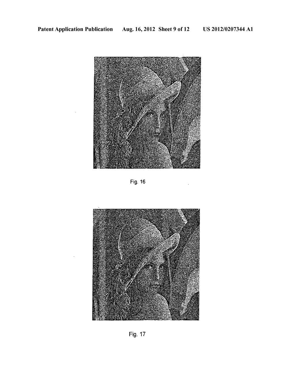 METHOD AND APPARATUS FOR HIDING DATA FOR HALFTONE IMAGES - diagram, schematic, and image 10