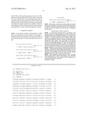 Probe for Detecting Polymorphism in MPL Gene and Use of the Probe diagram and image