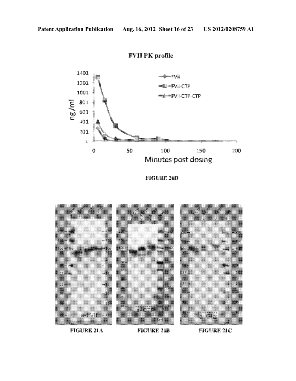 LONG-ACTING COAGULATION FACTORS AND METHODS OF PRODUCING SAME - diagram, schematic, and image 17