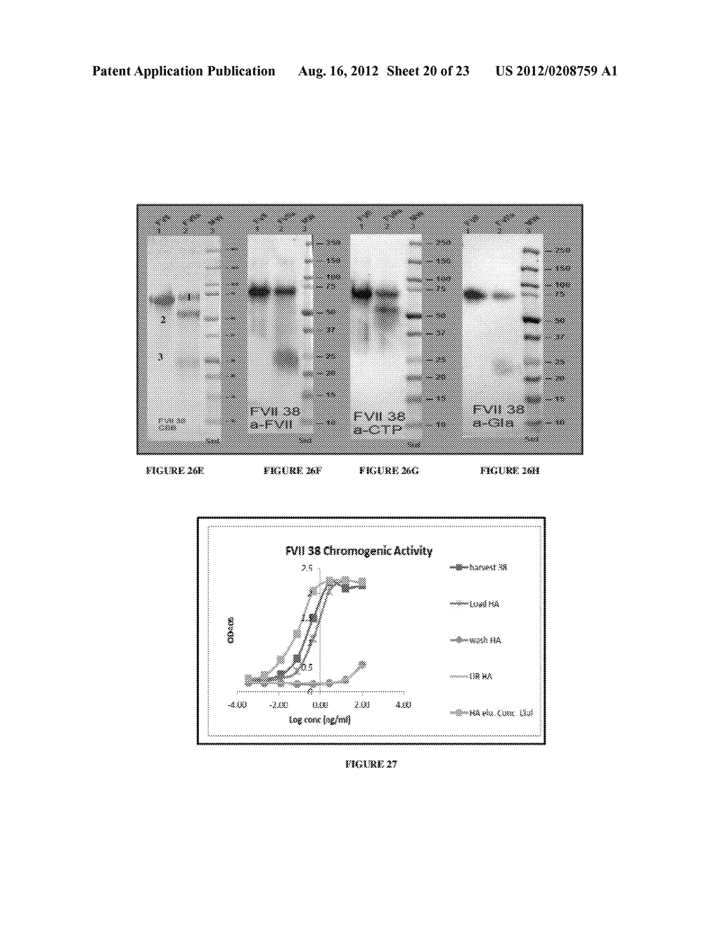 LONG-ACTING COAGULATION FACTORS AND METHODS OF PRODUCING SAME - diagram, schematic, and image 21