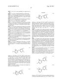 NOVEL 3-HYDROXY-5-ARYLISOXAZOLE DERIVATIVE diagram and image
