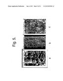 METHOD OF PRODUCING A POROUS MEMBRANE AND WATERPROOF, HIGHLY BREATHABLE     FABRIC INCLUDING THE MEMBRANE diagram and image