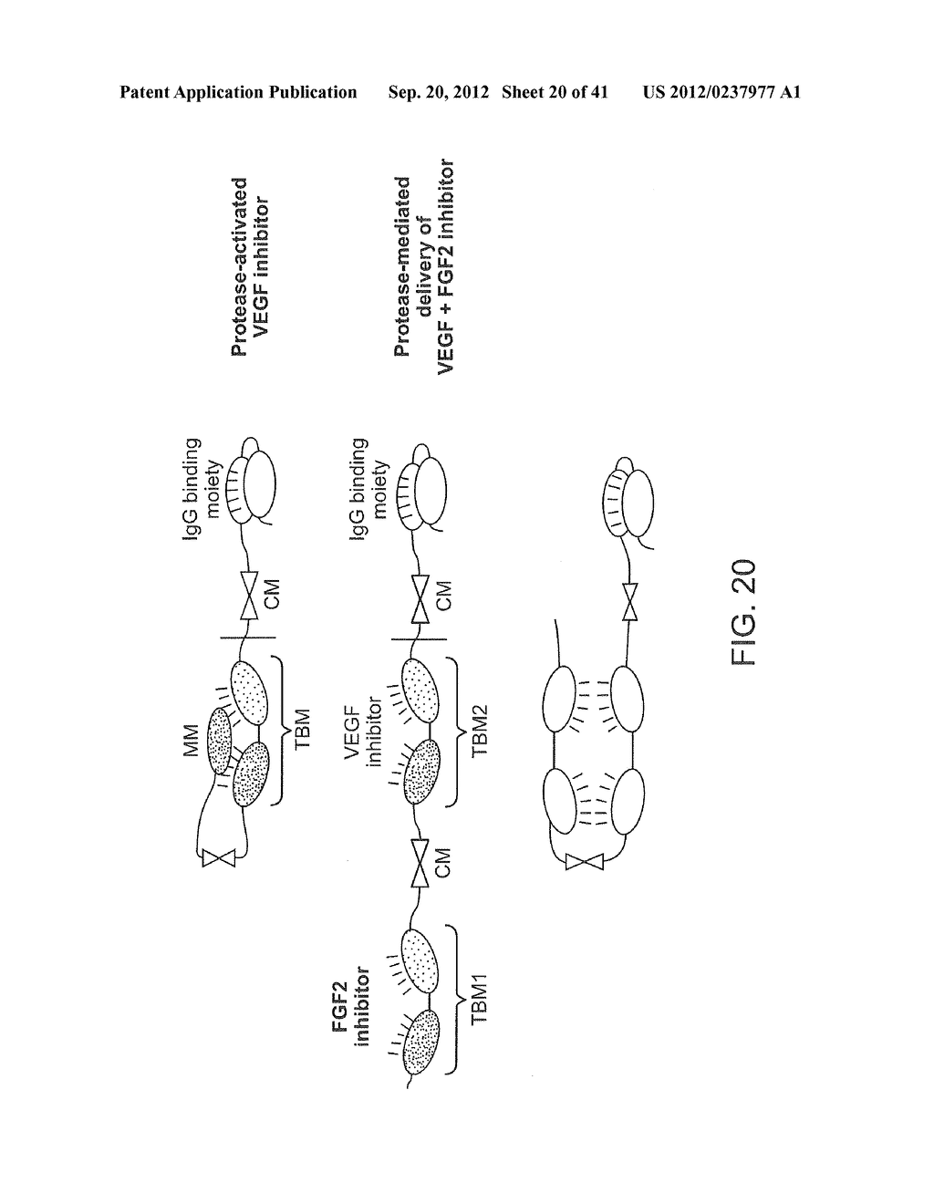 Activatable Binding Polypeptides and Methods of Identification and Use     Thereof - diagram, schematic, and image 21