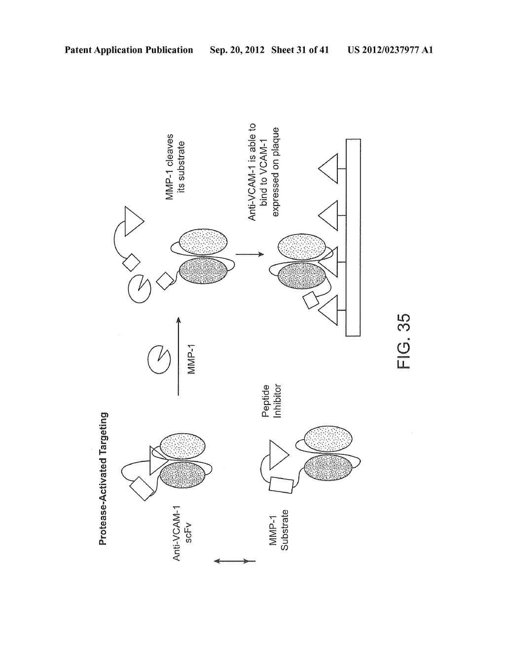 Activatable Binding Polypeptides and Methods of Identification and Use     Thereof - diagram, schematic, and image 32