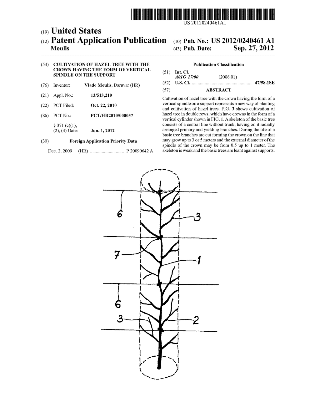 CULTIVATION OF HAZEL TREE WITH THE CROWN HAVING THE FORM OF VERTICAL     SPINDLE ON THE SUPPORT - diagram, schematic, and image 01