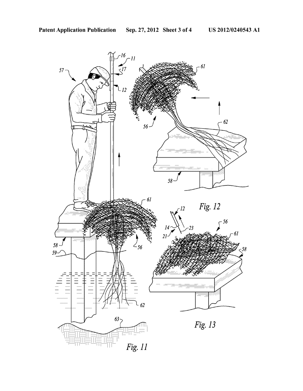 APPARATUS AND METHOD FOR EXTRACTING AQUATIC WEEDS - diagram, schematic, and image 04