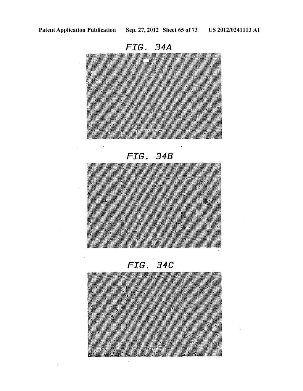 Methods of Making a Belt-Creped Absorbent Cellulosic Sheet Prepared with a     Perforated Polymeric Belt - diagram, schematic, and image 66