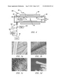 MICROFIBER SUPPORTED METAL SILICIDE NANOWIRES diagram and image