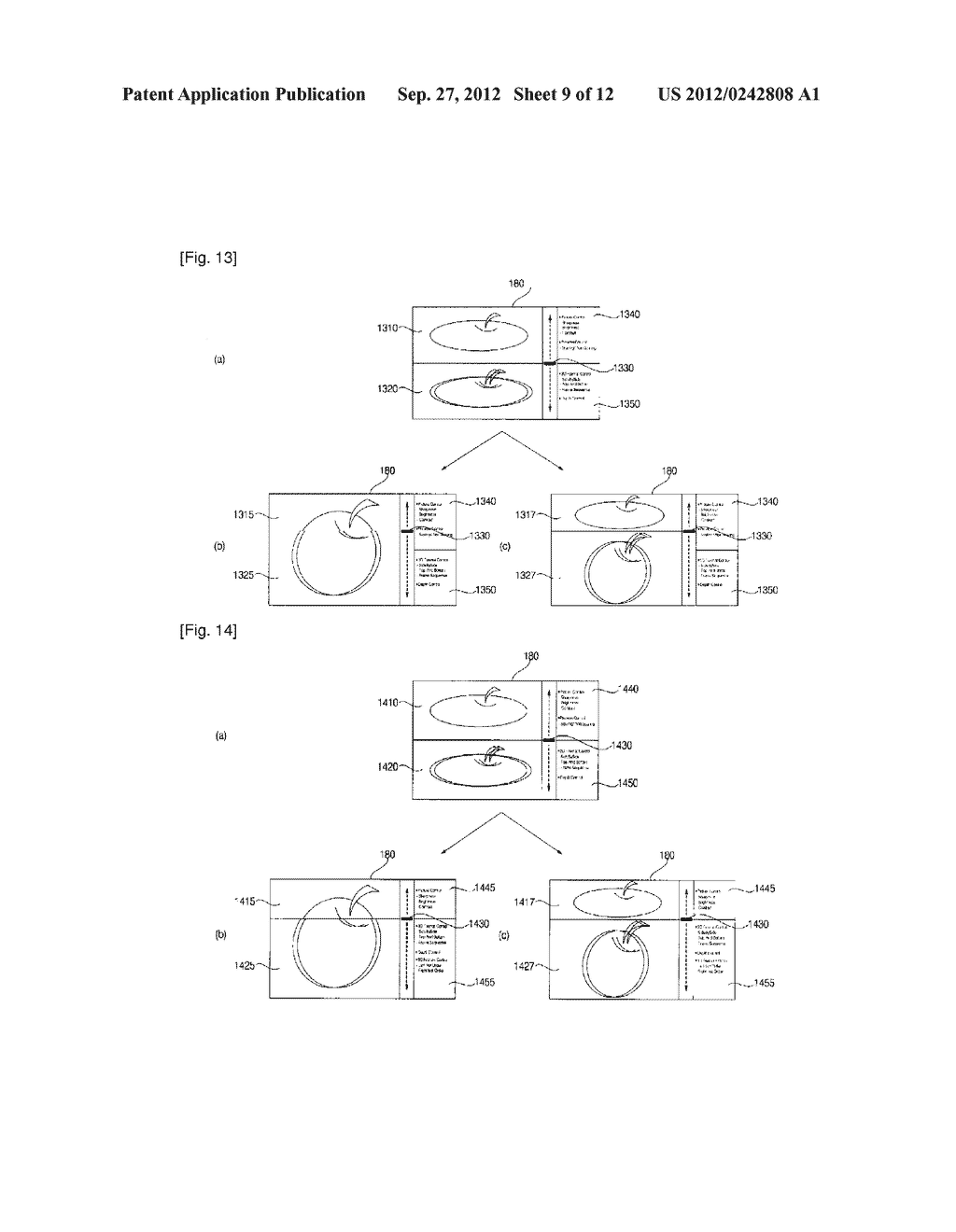 IMAGE DISPLAY APPARATUS AND METHOD FOR OPERATING THE SAME - diagram, schematic, and image 10