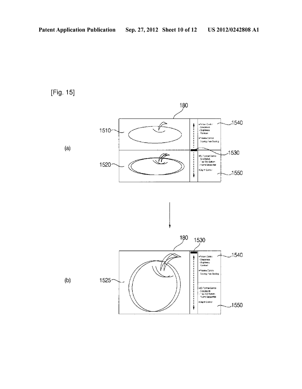 IMAGE DISPLAY APPARATUS AND METHOD FOR OPERATING THE SAME - diagram, schematic, and image 11