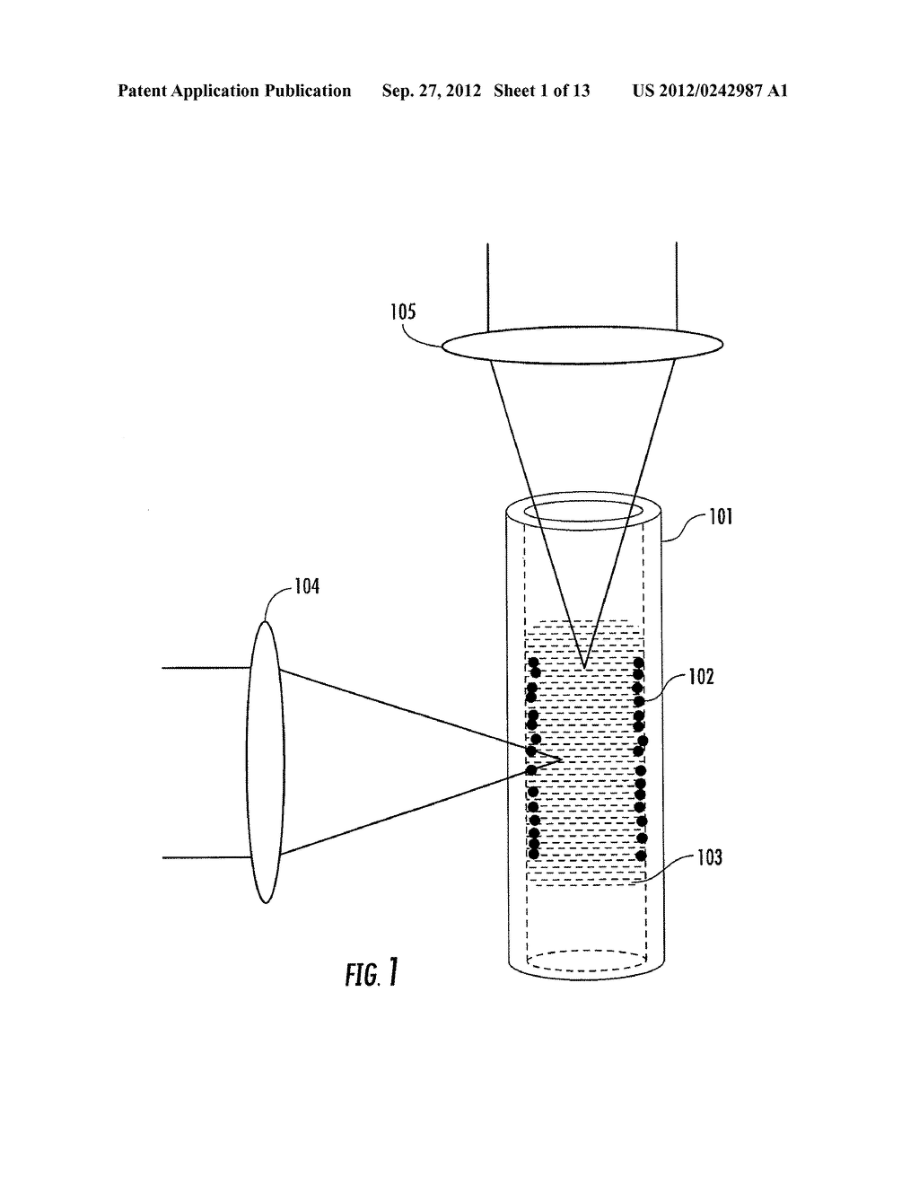 SURFACE-ENHANCED RAMAN SCATTERING APPARATUS AND METHODS - diagram, schematic, and image 02