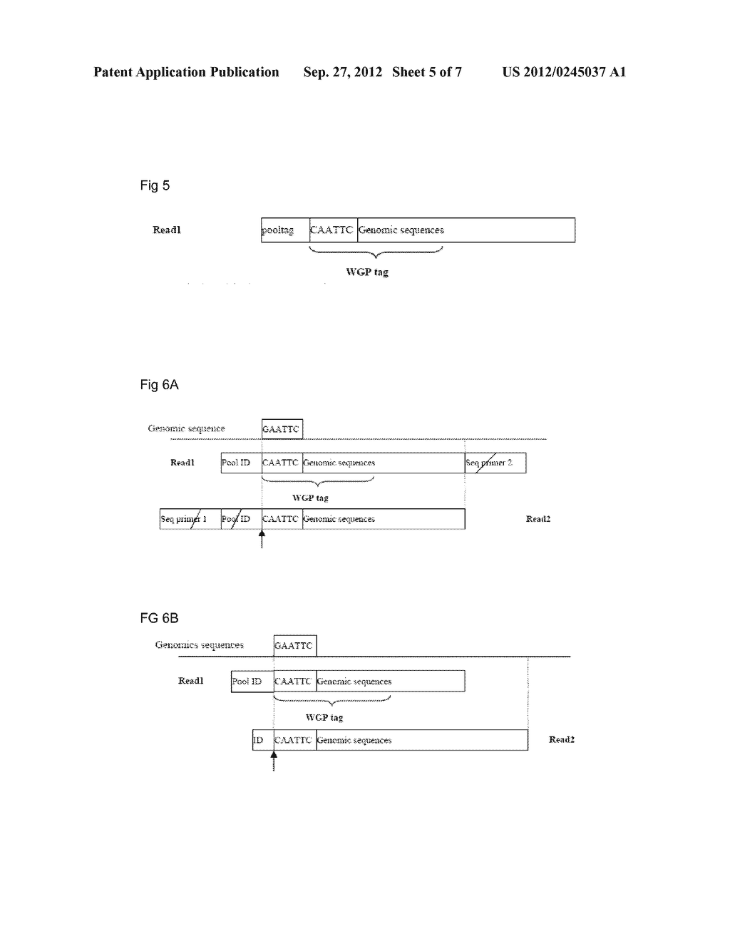 RESTRICTION ENZYME BASED WHOLE GENOME SEQUENCING - diagram, schematic, and image 06
